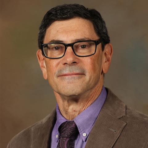 Photo of Ronald Hoffman
